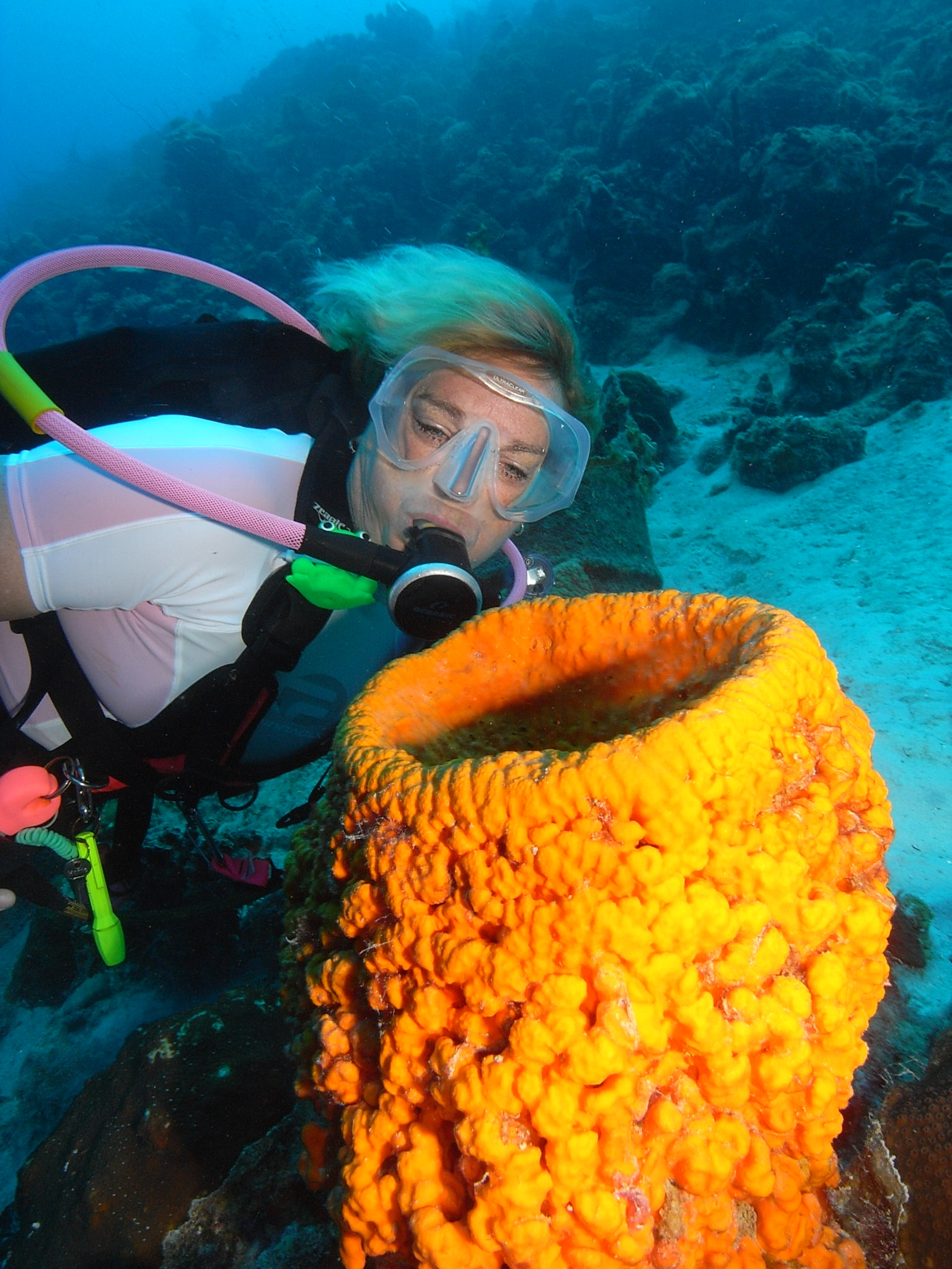 Scuba Diving Myths – And REALITIES!