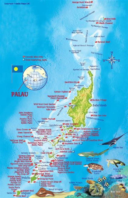 Palau Historical World Class Diving MaduroDive Blog