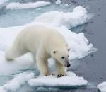 spitsbergen_(c)_franco_banfi