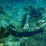 anchor-lg