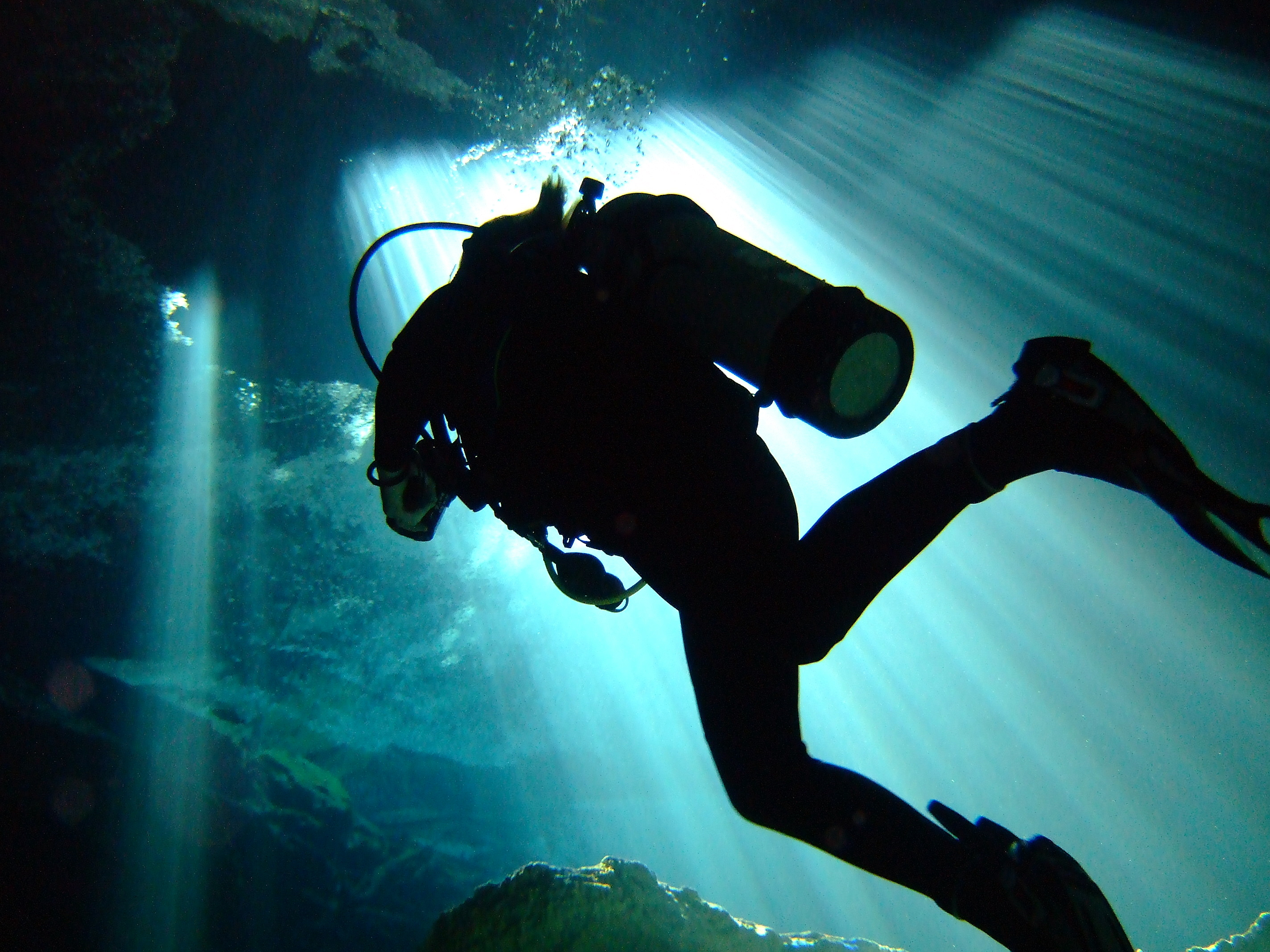 Anxiously Awaiting Your Next Dive?