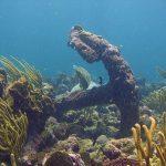 scuba-diving-in-tobago